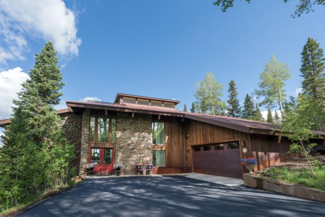 111 Saddle Horn Lane, Telluride, CO 81435 (MLS #37224) :: Telluride Properties