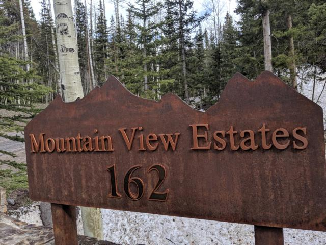 162 San Joaquin Boulevard #3, Mountain Village, CO 81435 (MLS #37235) :: Nevasca Realty