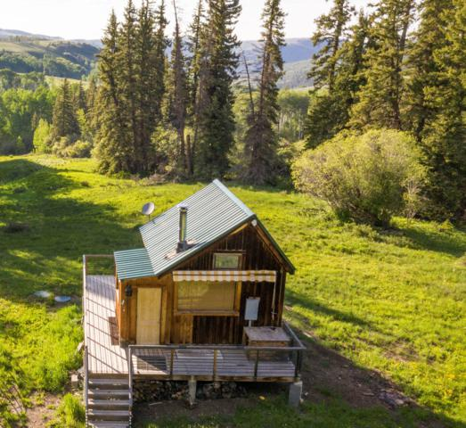 LOT 44 Wilson Mesa Ranch, Placerville, CO 81430 (MLS #37282) :: Telluride Properties