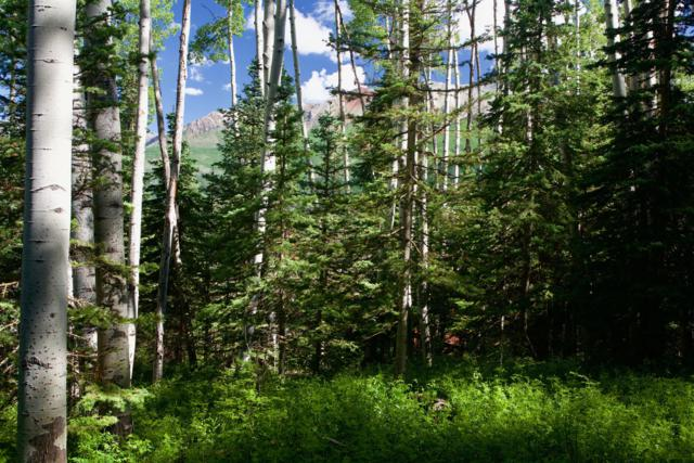 TBD Victoria Drive 1004BR, Mountain Village, CO 81435 (MLS #37292) :: Telluride Properties