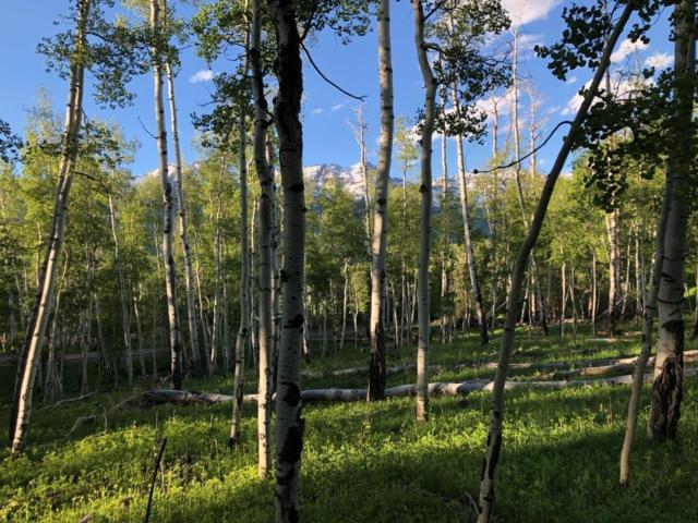 449 Wapiti Road #37, Telluride, CO 81435 (MLS #37295) :: Telluride Properties