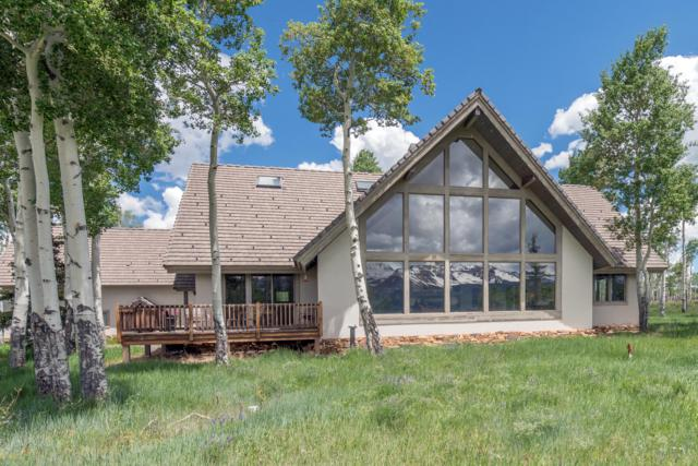 1960 W Anderson Road, Placerville, CO 81430 (MLS #37300) :: Telluride Properties