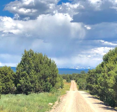 tbd Thunder Road & Catspaw Way, Norwood, CO 81423 (MLS #37301) :: Telluride Properties