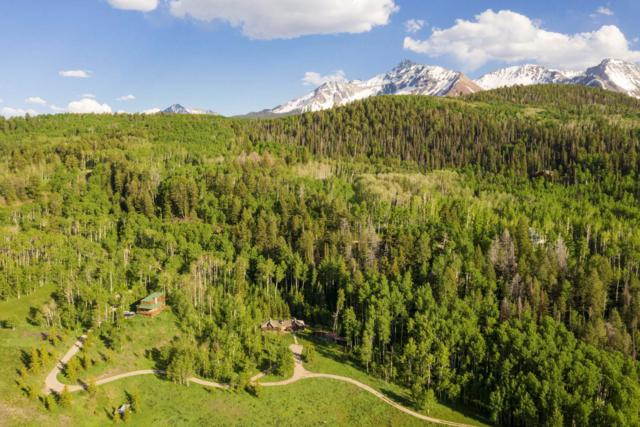 675 Wilson Mesa Ranch Circle, Placerville, CO 81430 (MLS #37306) :: Telluride Properties