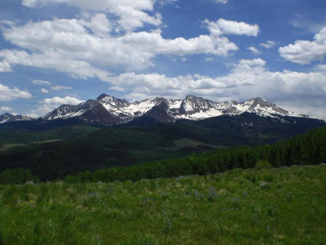 tbd Little Cone Ranch Road #14, Placerville, CO 81430 (MLS #37375) :: Telluride Properties