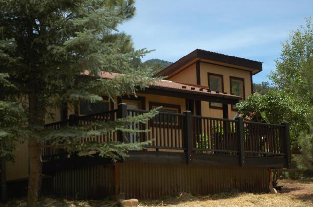 150 2nd Street, Placerville, CO 81430 (MLS #37379) :: Telluride Real Estate Corp.