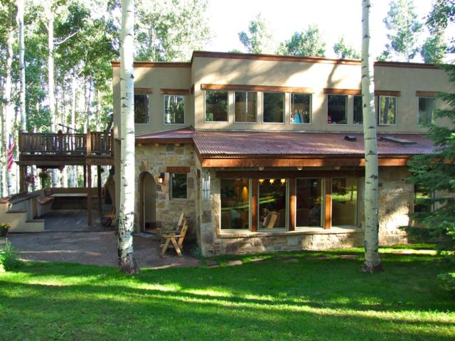 259 Elk Park, Telluride, CO 81435 (MLS #37399) :: Telluride Real Estate Corp.