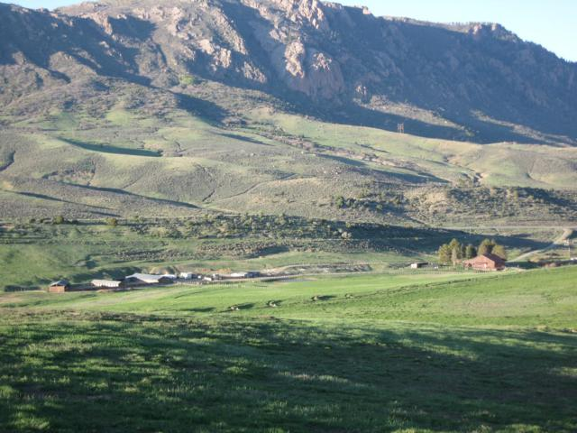 79750 Highway 50, Montrose, CO 81401 (MLS #37430) :: Telluride Real Estate Corp.