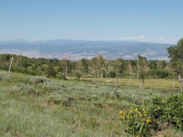 13 Red Cloud Circle #7, Montrose, CO 81403 (MLS #37437) :: Telluride Properties