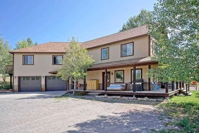 600 River Park Drive, Ridgway, CO 81432 (MLS #37463) :: Telluride Properties