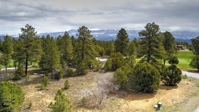 TBD - 556 N Badger Trail #556, Ridgway, CO 81432 (MLS #37469) :: Telluride Properties