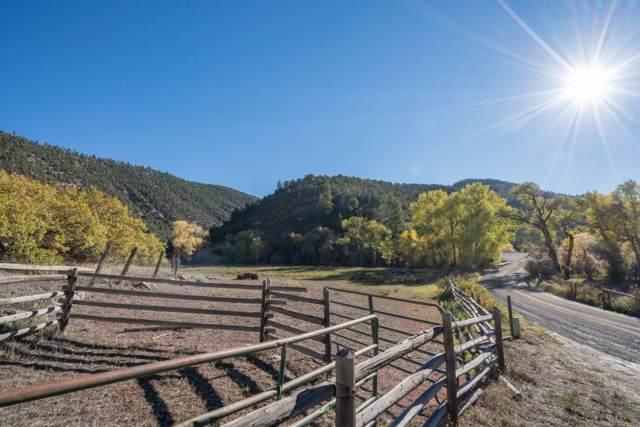 68 Sanborn Park Road, Norwood, CO 81423 (MLS #37506) :: Telluride Real Estate Corp.