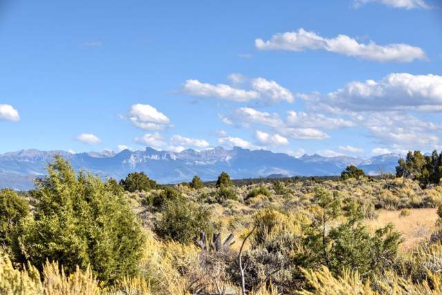 TBD Tres Coyote Trail #9, Montrose, CO 81403 (MLS #37592) :: Telluride Real Estate Corp.