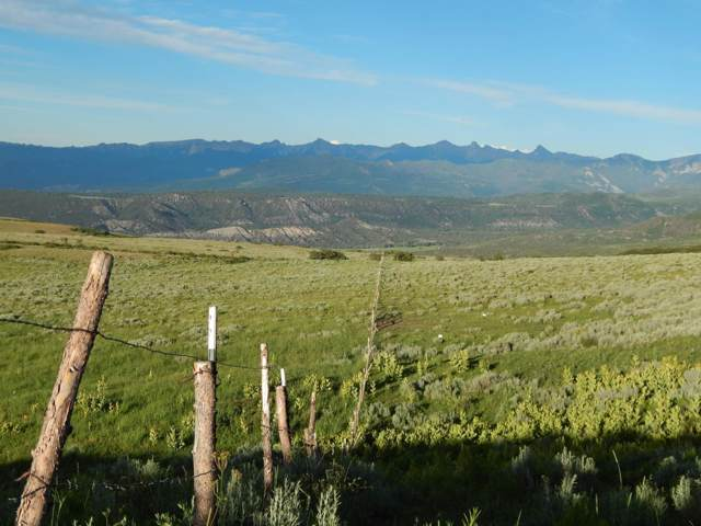 TBD 2 Lots Highway 62 Lots 4 & 5, Ridgway, CO 81432 (MLS #37602) :: Telluride Properties