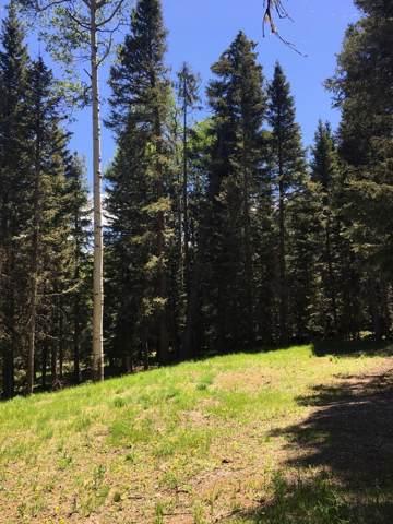 385 Aspen Trail, Cimarron, CO 81220 (MLS #37614) :: Telluride Properties