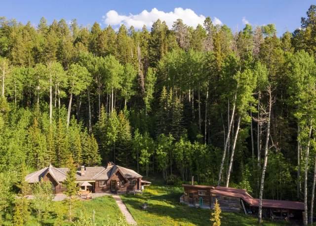 675 Wilson Mesa Ranch Circle, Placerville, CO 81430 (MLS #37638) :: Telluride Properties