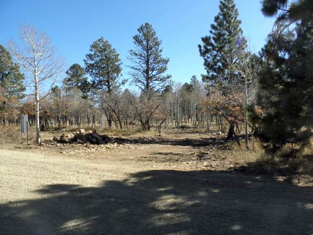 TBD Mckenzie Springs Road #12, Placerville, CO 81430 (MLS #37647) :: Telluride Properties