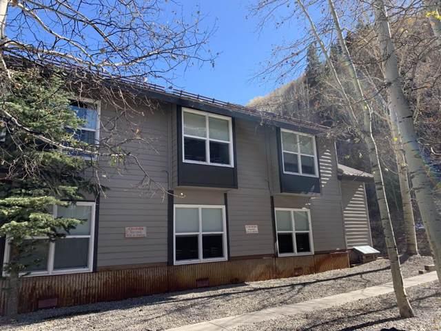 333 S Davis Street #318, Telluride, CO 81435 (MLS #37661) :: Telluride Properties
