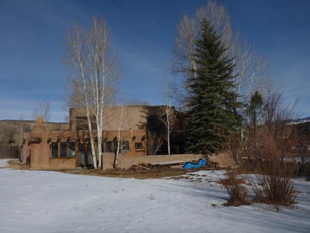 251 Liddell Drive, Ridgway, CO 81432 (MLS #37715) :: Telluride Properties
