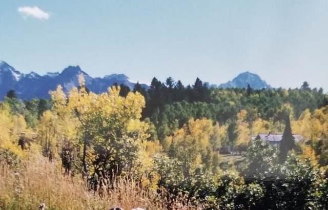 124 Alpine Lane #426, Ridgway, CO 81432 (MLS #37741) :: Telluride Real Estate Corp.