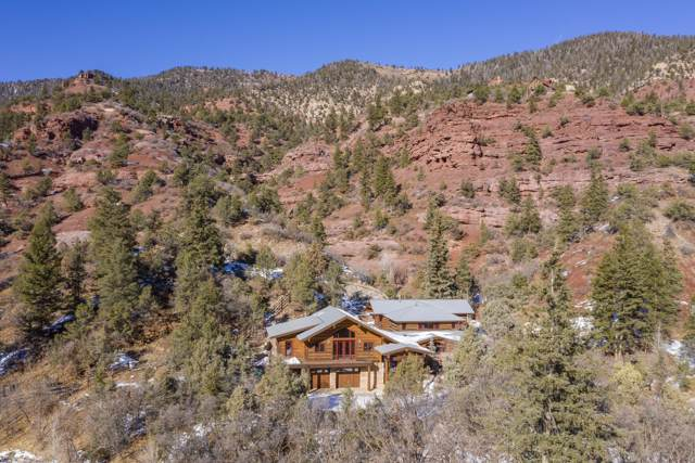 20978 Co-145, Placerville, CO 81430 (MLS #37794) :: Telluride Properties