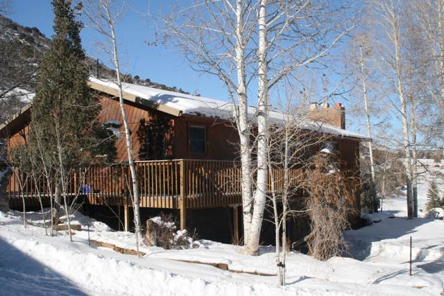 5733 Co Rd 23, Ridgway, CO 81432 (MLS #37829) :: Telluride Properties