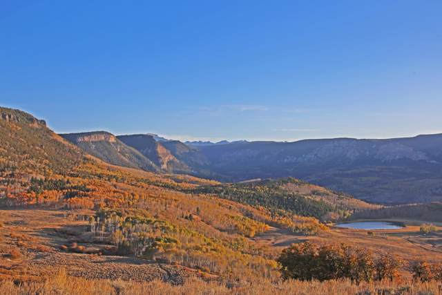1597 Us-50, Cimarron, CO 81220 (MLS #37838) :: Telluride Properties