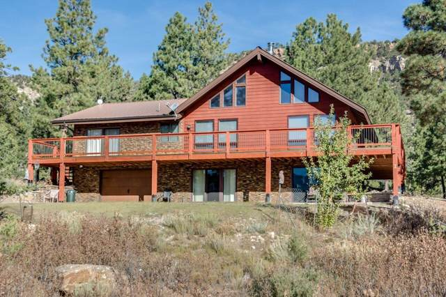 1258 Catamount Drive, Ridgway, CO 81432 (MLS #37847) :: Telluride Properties