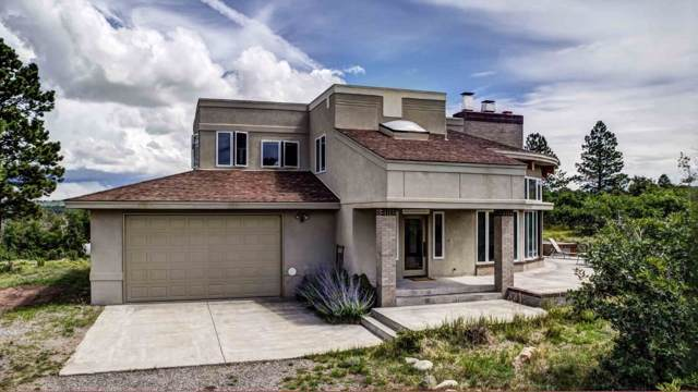 876 High Bluff Drive, Placerville, CO 81430 (MLS #37868) :: Coldwell Banker Distinctive Properties