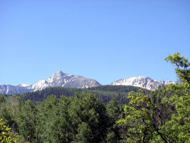 TBD Ross Road 11A, Placerville, CO 81430 (MLS #37883) :: Telluride Properties