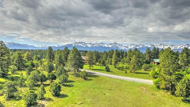 TBD Bear Cub Drive #342, Ridgway, CO 81432 (MLS #37935) :: Telluride Real Estate Corp.