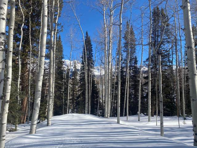TBD Wapiti, Telluride, CO 81435 (MLS #37962) :: Telluride Real Estate Corp.