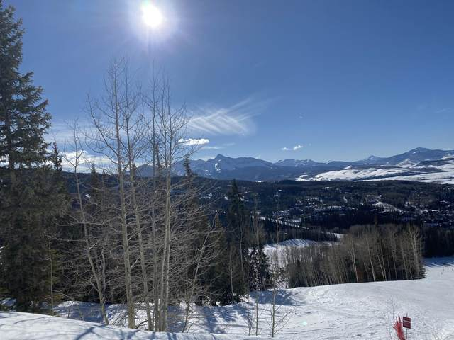 unit 22 The Ridge, Mountain Village, CO 81435 (MLS #37973) :: Telluride Real Estate Corp.