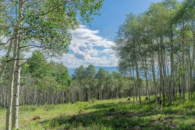 6A and 6B Spruce Mountain Lane, Ridgway, CO 81432 (MLS #37974) :: Compass