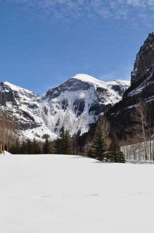 TBD Liberty Bell Lane #5, Telluride, CO 81435 (MLS #37983) :: Telluride Real Estate Corp.