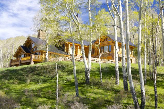 307 Basque Boulevard, Telluride, CO 81435 (MLS #37989) :: Telluride Properties