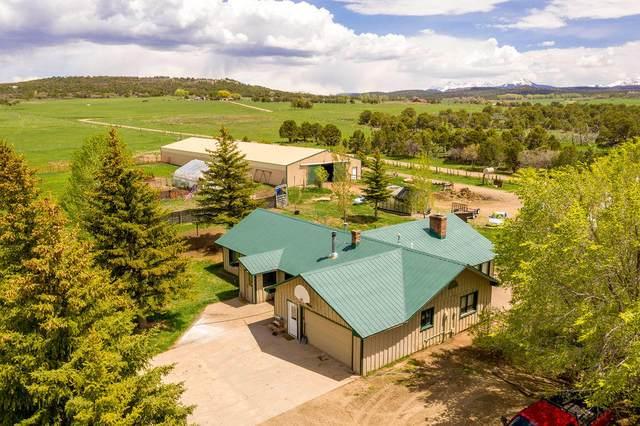 1448 West Co Rd 46X, Norwood, CO 81423 (MLS #38047) :: Telluride Properties