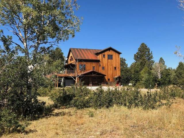 406 Flagstone Lane, Norwood, CO 81423 (MLS #38059) :: Telluride Properties