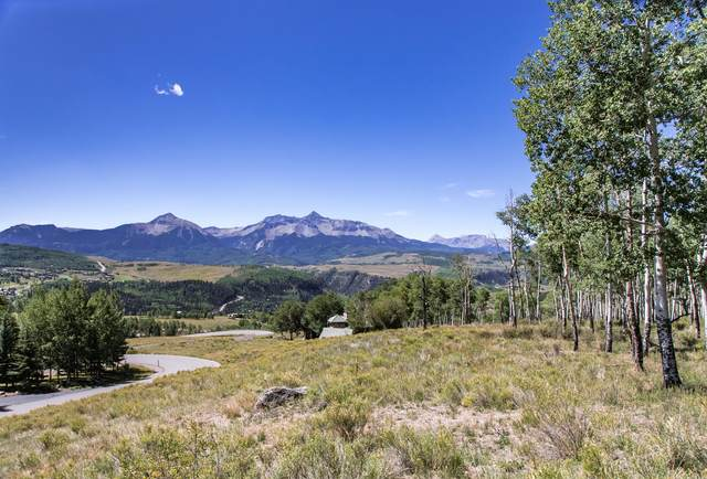 Lot 20R Aldasoro Boulevard 20R, Telluride, CO 81435 (MLS #38077) :: Coldwell Banker Distinctive Properties