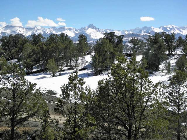 94 Pleasant Valley Drive #3, Ridgway, CO 81432 (MLS #38120) :: Telluride Real Estate Corp.