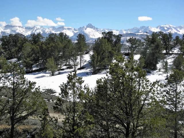94 Pleasant Valley Drive #3, Ridgway, CO 81432 (MLS #38120) :: Telluride Properties