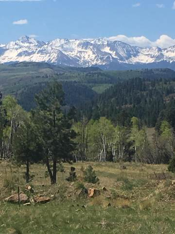 Tract A1 Brown Ranch Road Tract A1, Placerville, CO 81430 (MLS #38144) :: Telluride Properties