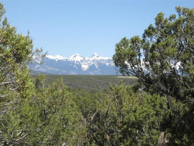 TBD Cactus Drive, Montrose, CO 81401 (MLS #38145) :: Telluride Real Estate Corp.
