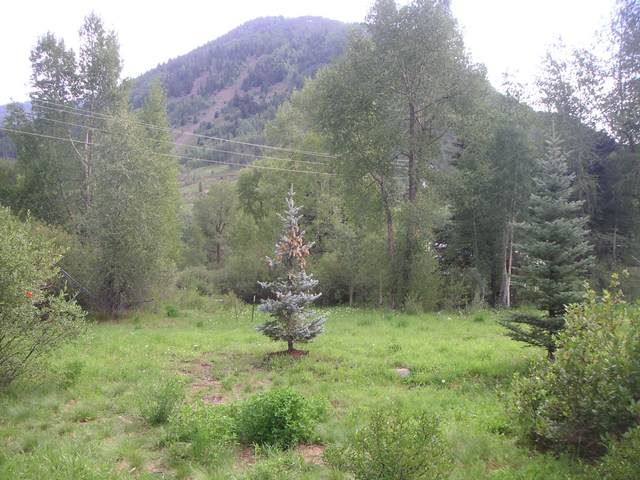 TBD N River Street, Rico, CO 81332 (MLS #38165) :: Telluride Properties