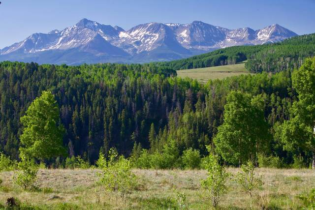 TBD Blunt Road A1, Placerville, CO 81430 (MLS #38184) :: Telluride Real Estate Corp.