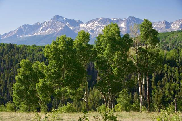 TBD Blunt Road A2 - A3, Placerville, CO 81430 (MLS #38185) :: Telluride Properties