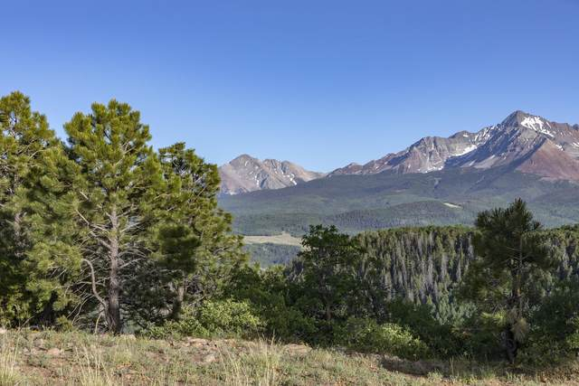 TBD Blunt Road A3, Placerville, CO 81430 (MLS #38186) :: Telluride Real Estate Corp.