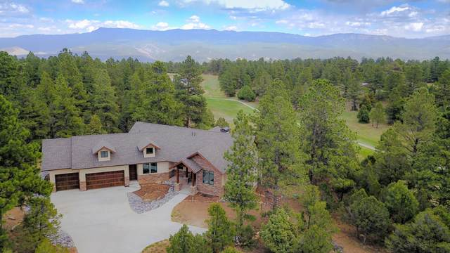 1878 Marmot Drive, Ridgway, CO 81432 (MLS #38234) :: Coldwell Banker Distinctive Properties