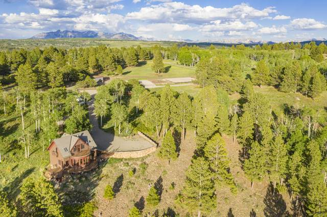 185 South Point Road, Placerville, CO 81430 (MLS #38246) :: Telluride Properties