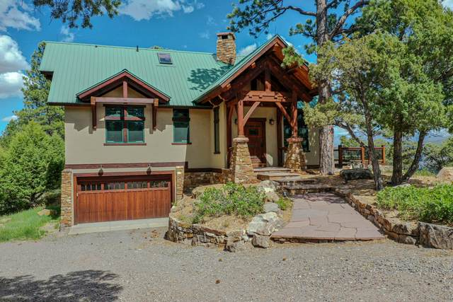 1036 Pleasant Valley Drive, Ridgway, CO 81432 (MLS #38248) :: Telluride Real Estate Corp.